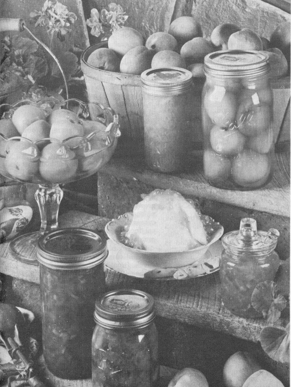 Canning, Freezing, Storing Garden Produce, By United States Department Of  Agriculture—a Project Gutenberg EBook