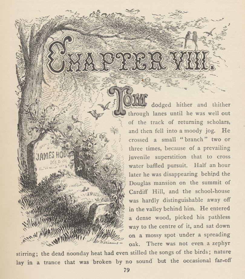 Adventures Of Tom Sawyer Online Book
